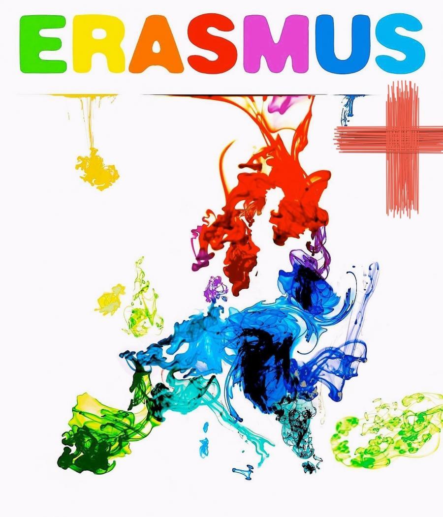 Modern Shepherds Erasmus