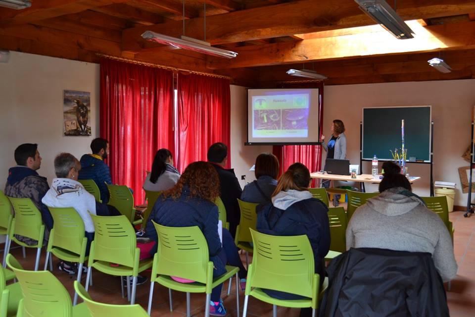 memoria_2015-curso