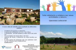 voluntariado_ presentacion